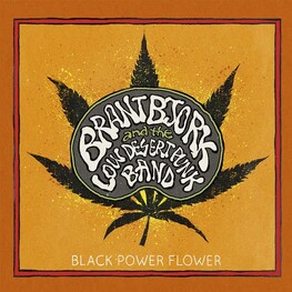 BRANT BJORK & THE LOW DESERT PUNK BAND - Black Power Flower (CD)