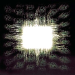 TOOL - Aenima  (Limited Edition) (CD)
