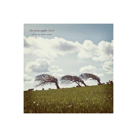 THE PINEAPPLE THIEF - What We Have Sown (CD)