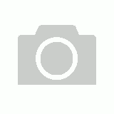 THE OCEAN - Ammonites & Ferns Design Hooded Sweatshirt With Zip (Black) - Large (Shirt)