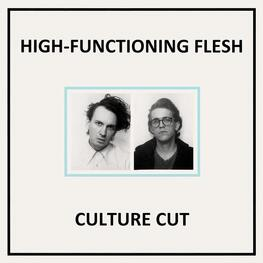 HIGH-FUNCTIONING FLESH - Culture Cut (CD)